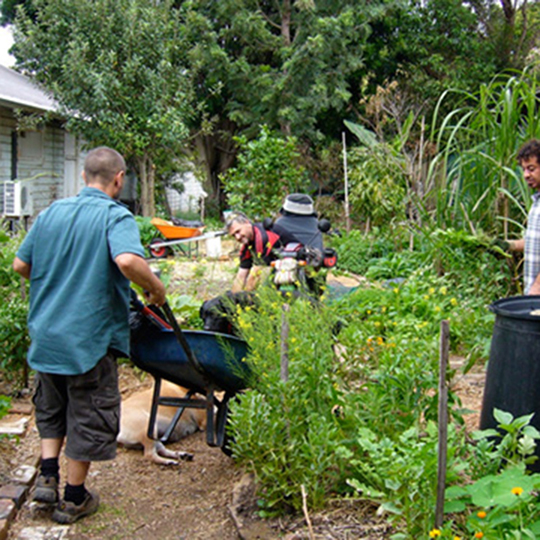 Community gardens - Inner West Council