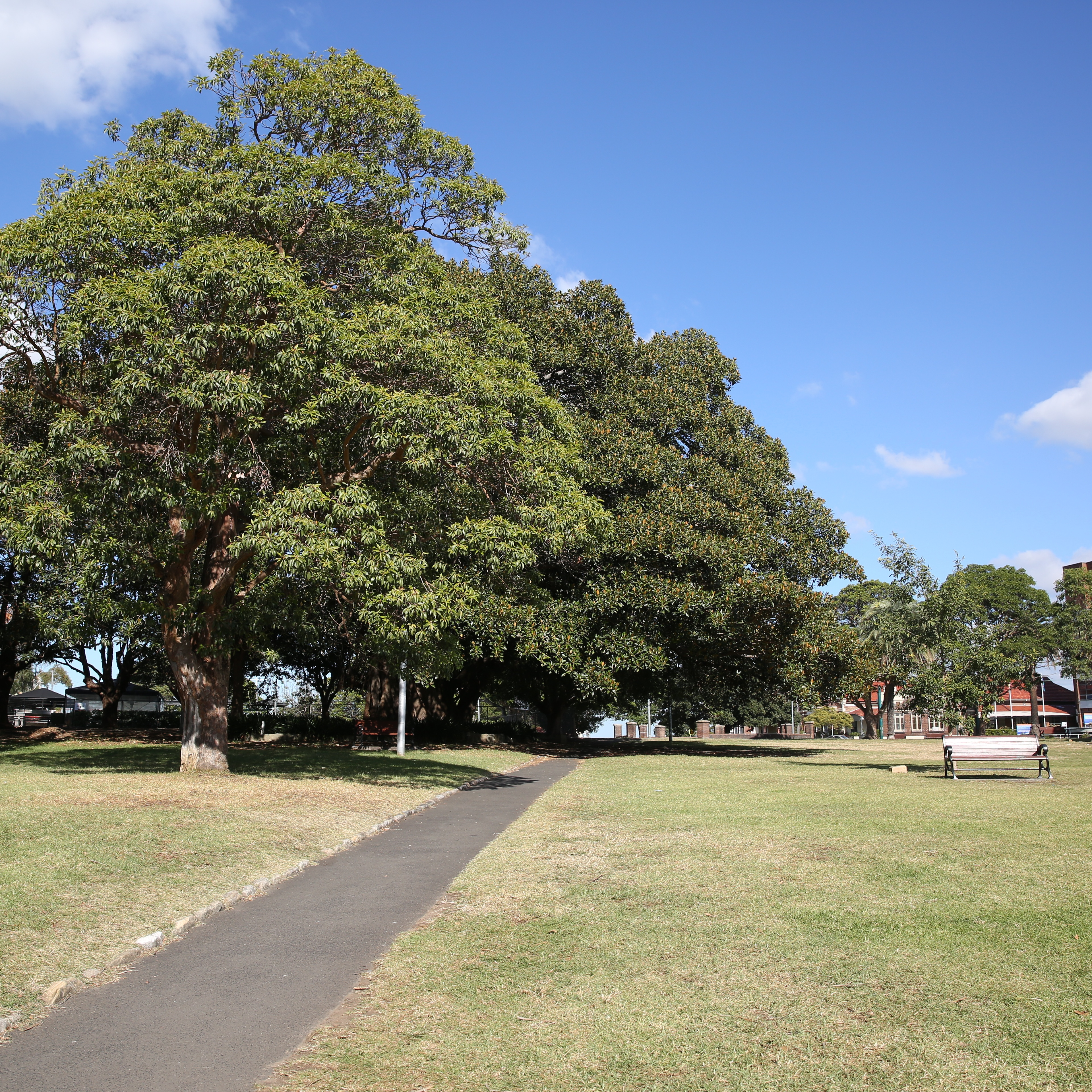 Warriors Path State Park Basketball Court: Inner West Council